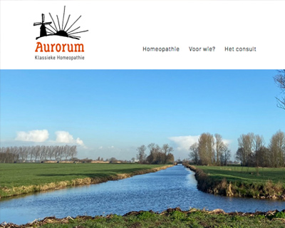 Webdesign Aurorum